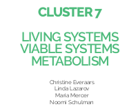 Living systems, viable systems, metabolism