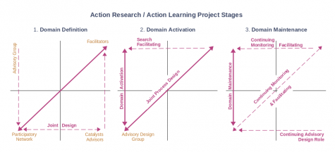 Figure 1b: Action research / action learning